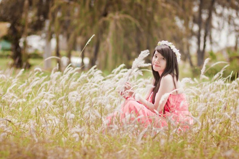 7. Cánh đồng hoa lau – Đà Nẵng