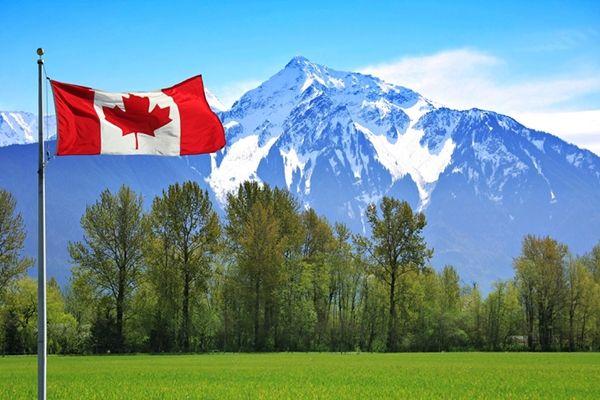 Canada - 48.164 USD/năm