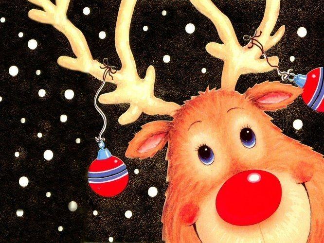 Một con tuần lộc của ông già Noel có chiếc mũi đỏ