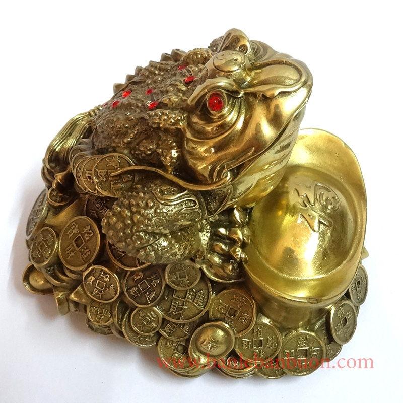 Người tuổi Ngọ - Cóc bằng đồng