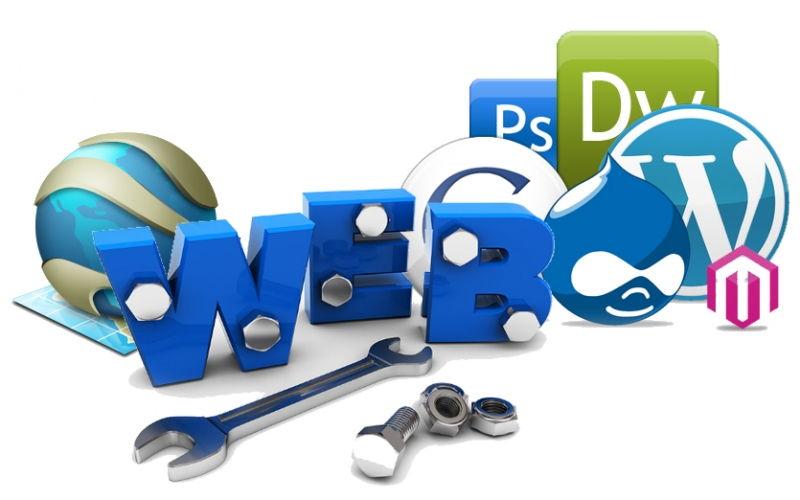 Phát triển web (Web Developer)