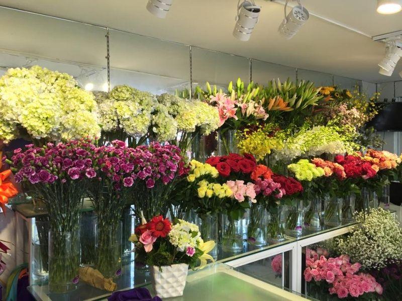 Shop hoa tươi Phi Hùng