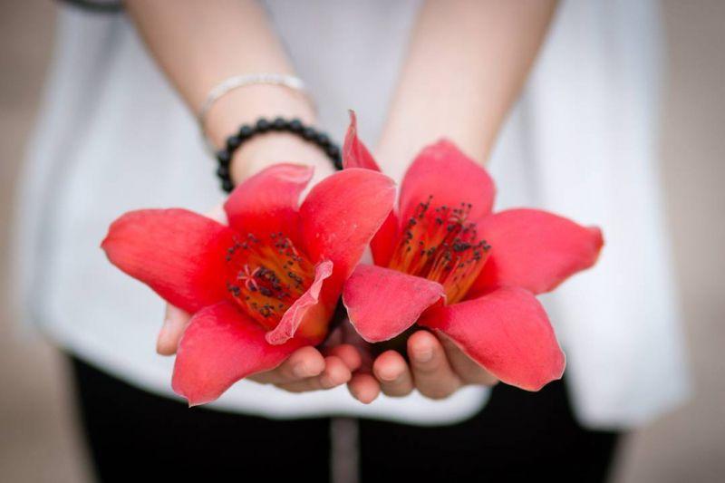 Bài thơ: THÁNG BA VỀ 2!  - Hoàng Minh Tuấn