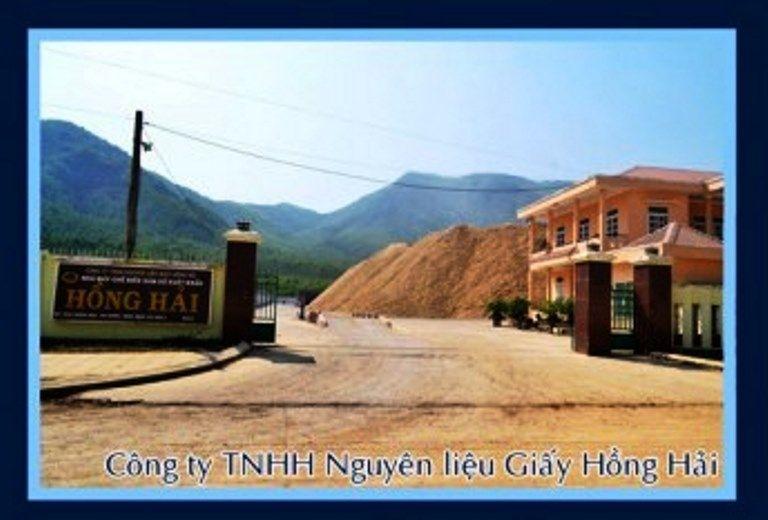Công ty trách nhiệm hữu hạn Nguyên liệu giấy Hồng Hải