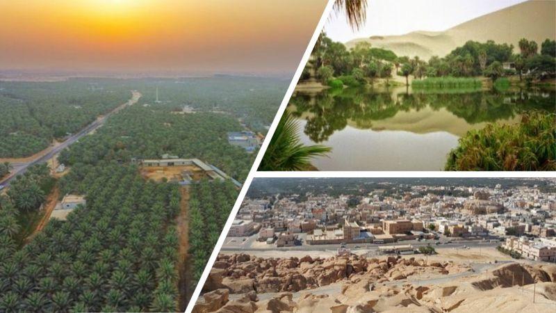 Al-Hasa Oasis, Ả rập Xê út