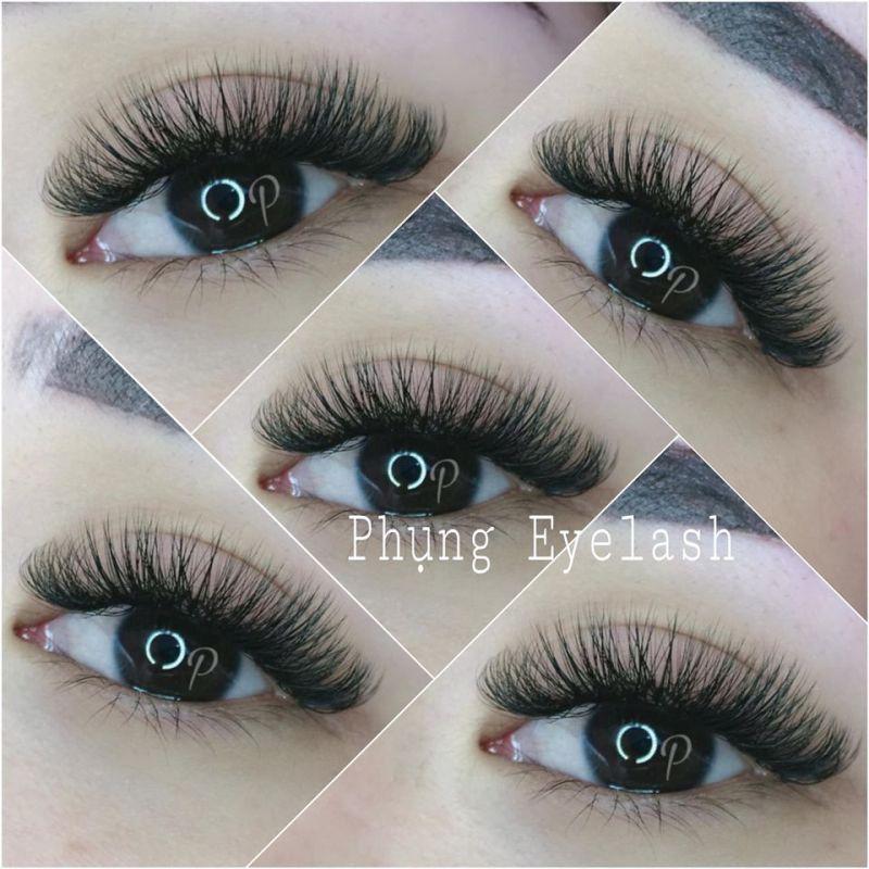 Phụng Eyelash