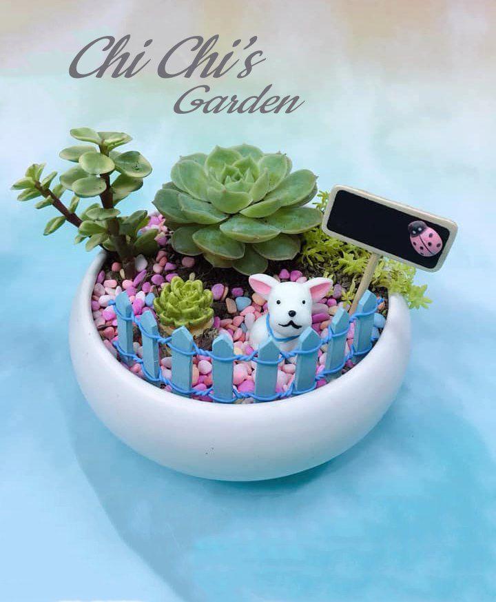 Chi Chi's Garden
