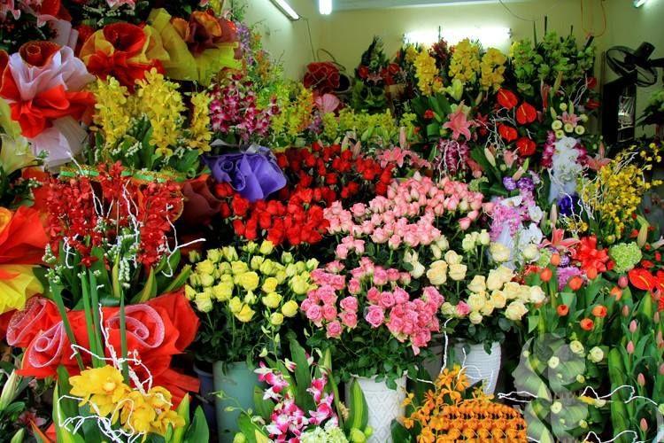 Điện hoa Vĩnh Phúc Nét Việt