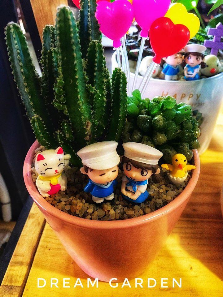 Dream Garden - Coffee, Tiểu cảnh mini, Sen đá, Cây cảnh văn phòng - Gia Lai