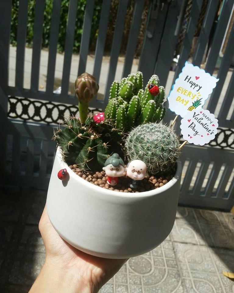 Lynn's Garden - Sen đá Vũng Tàu