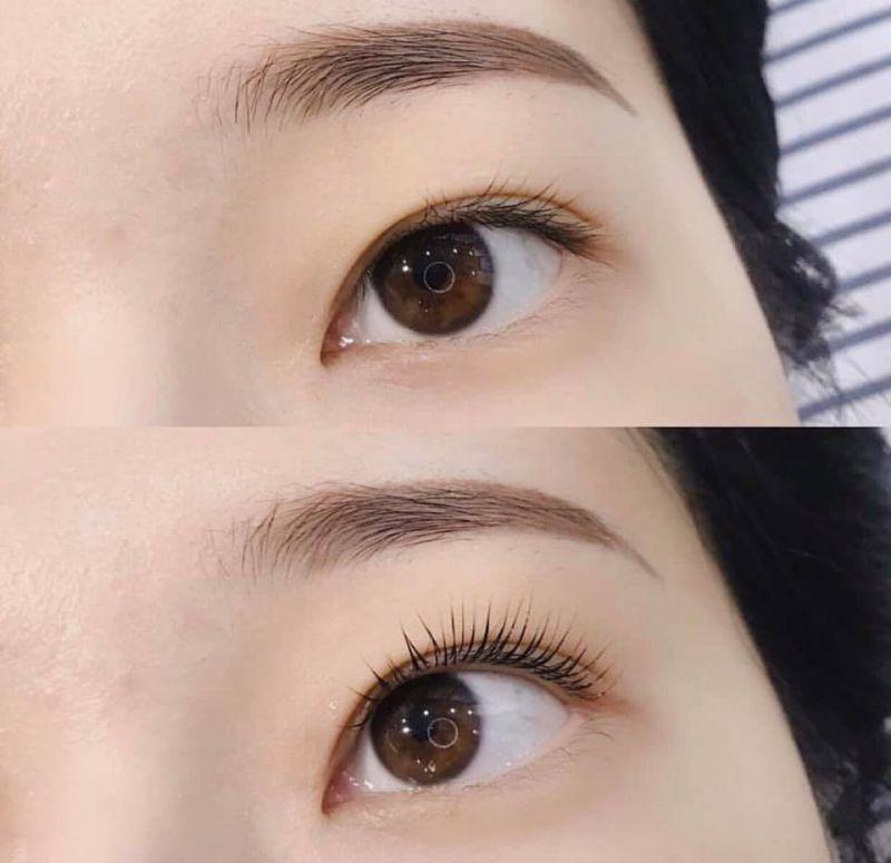 Ngọc Minh Tâm Eyelash