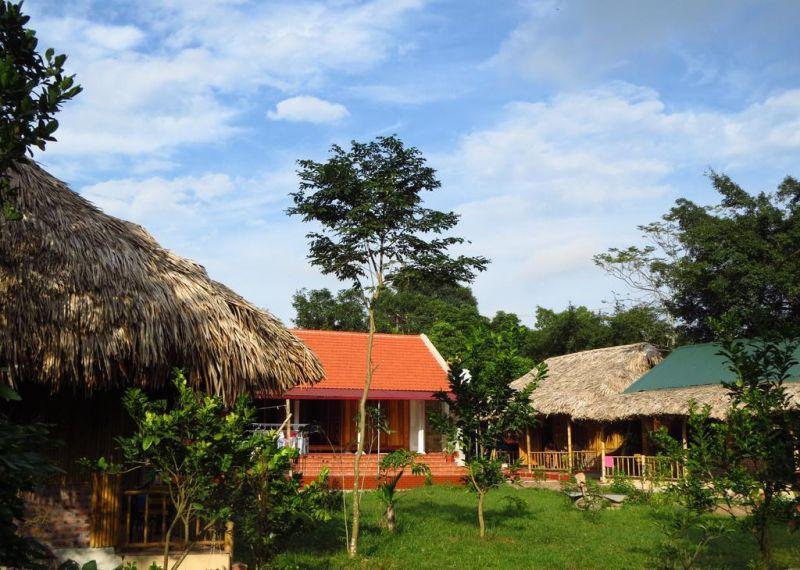 Ninh Binh Bungalow Homestay