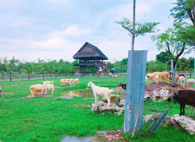 Nông Trang Xanh