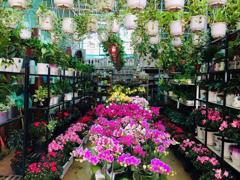 Pleiku Garden