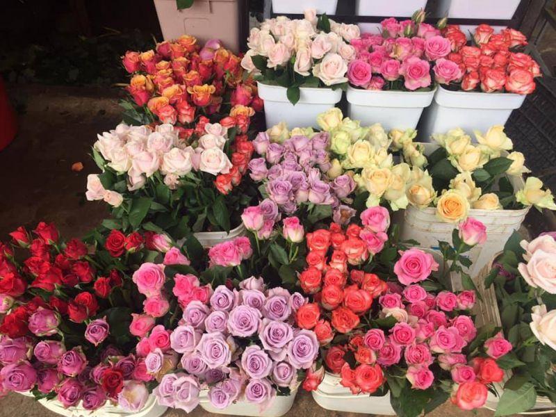 Shop hoa tươi Vĩnh Phúc Bảo Ngọc
