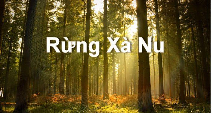 Bài văn phân tích hình tượng rừng xà nu số 2