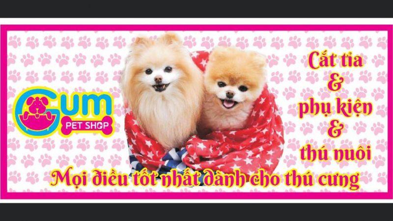 Gum PetShop
