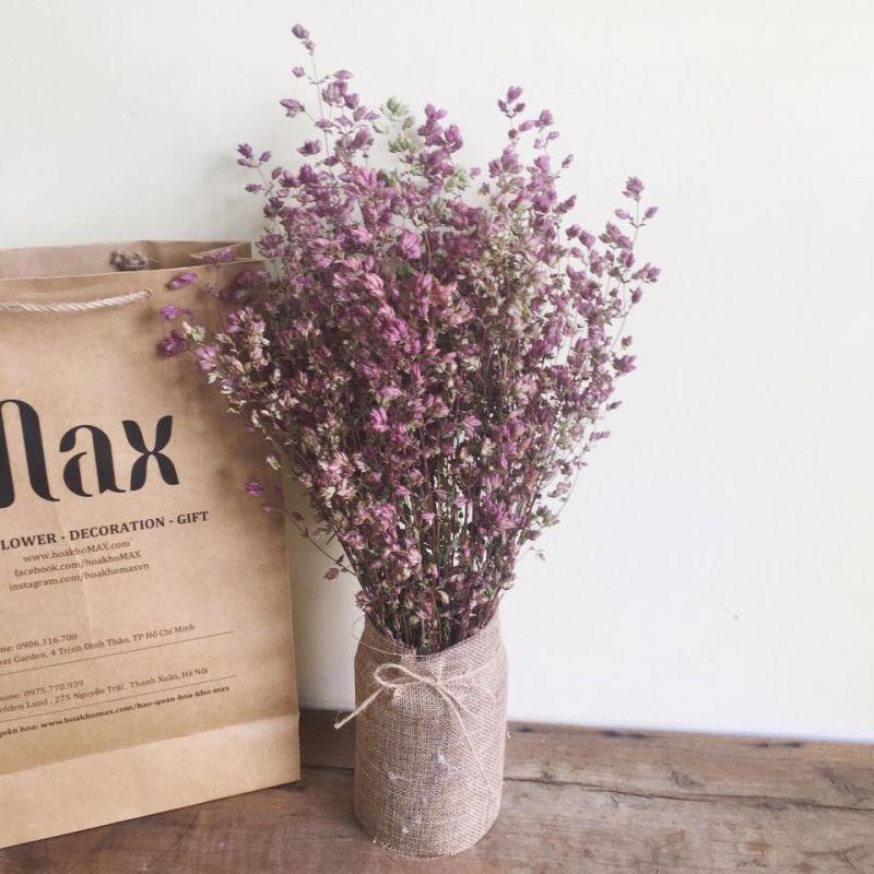 Hoa Khô Max Flower