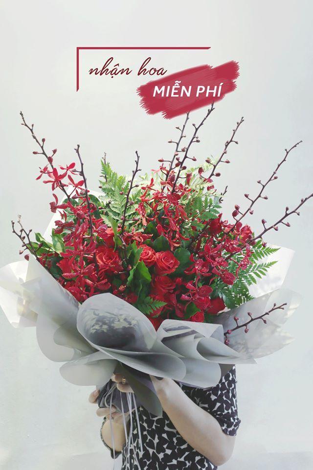 Hoa Lan Thanh Phong - Thanh Phong Orchids