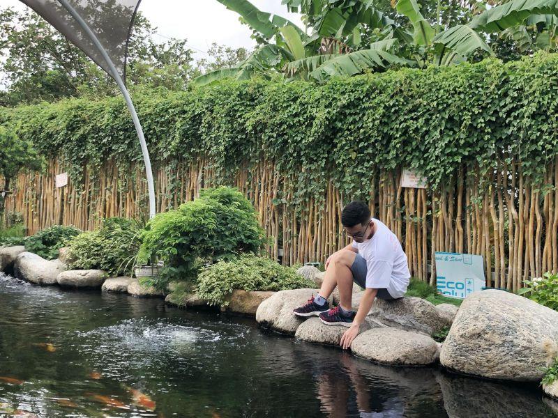 Iokkoi Coffee - Zen Garden