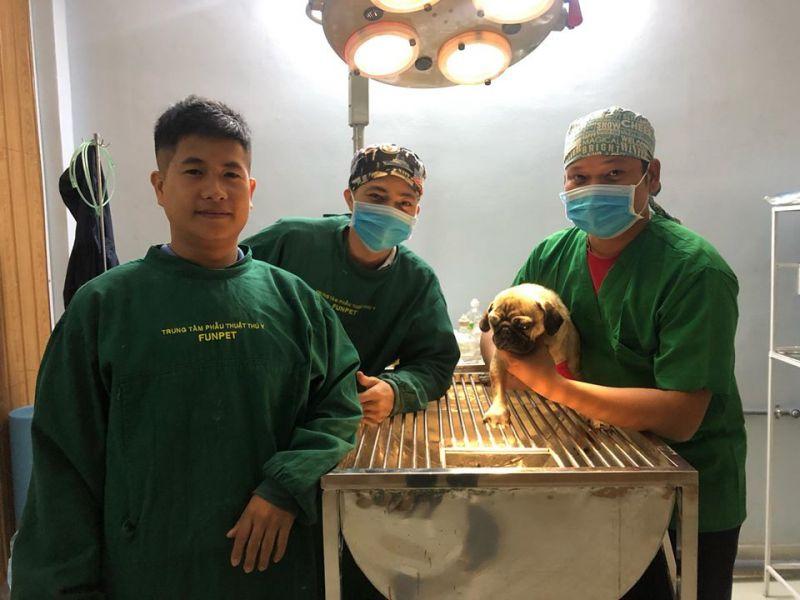 Bệnh viện thú y Funpet