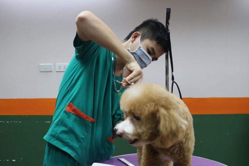 Phòng khám đa khoa thú y Tuấn Ngọc