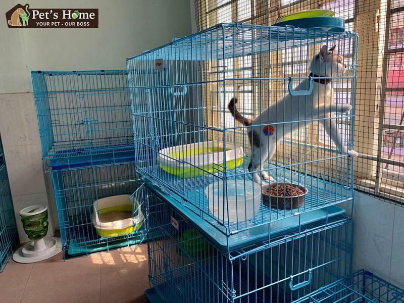 Pet's Home - Pet Stop