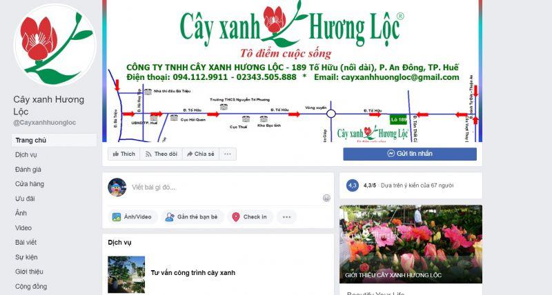Công ty TNHH cây xanh Hương Lộc