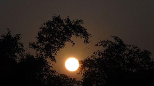 Dàn ý bài văn tả một đêm trăng đẹp số 2
