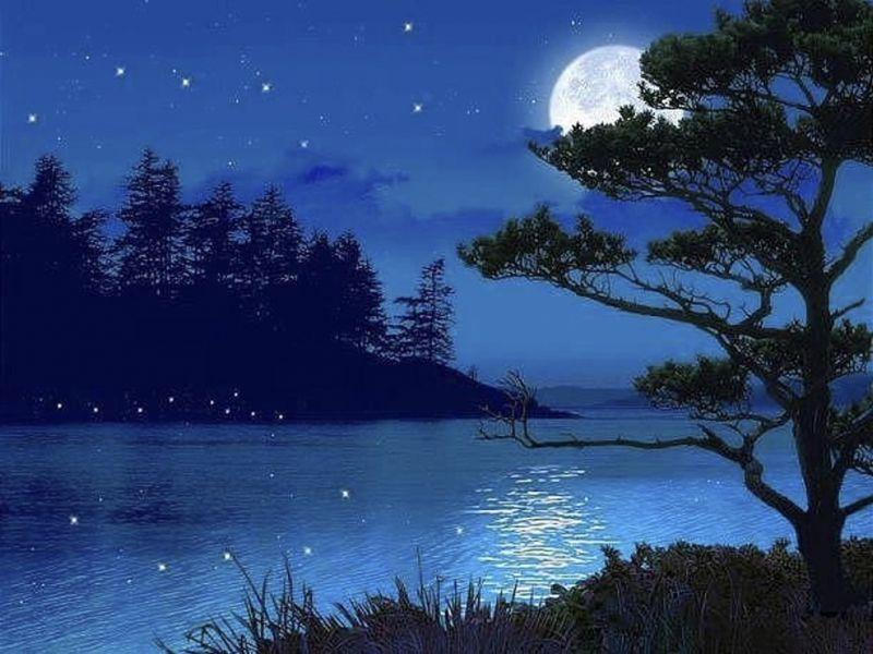 Dàn ý bài văn tả một đêm trăng đẹp số 5