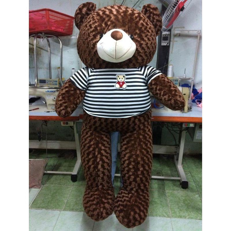 Gấu bông Teddy Cao Cấp