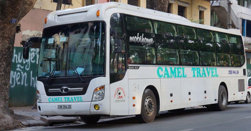 Hãng xe khách Camel