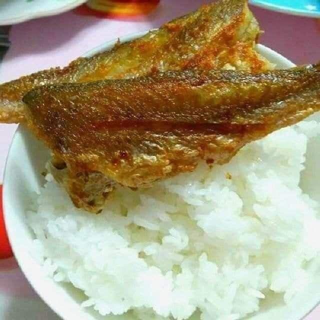 Nhat Ha Organic Foods