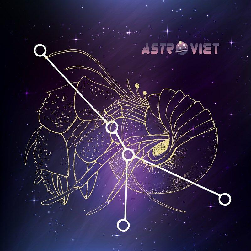 Tự Học Chiêm Tinh Cơ Bản - http://astrovietcom/