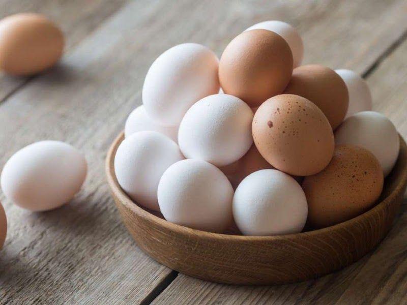 Trứng là nguồn thực phẩm dồi dào protein
