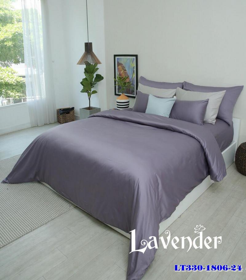Lavender - Chăn drap Hàn Quốc