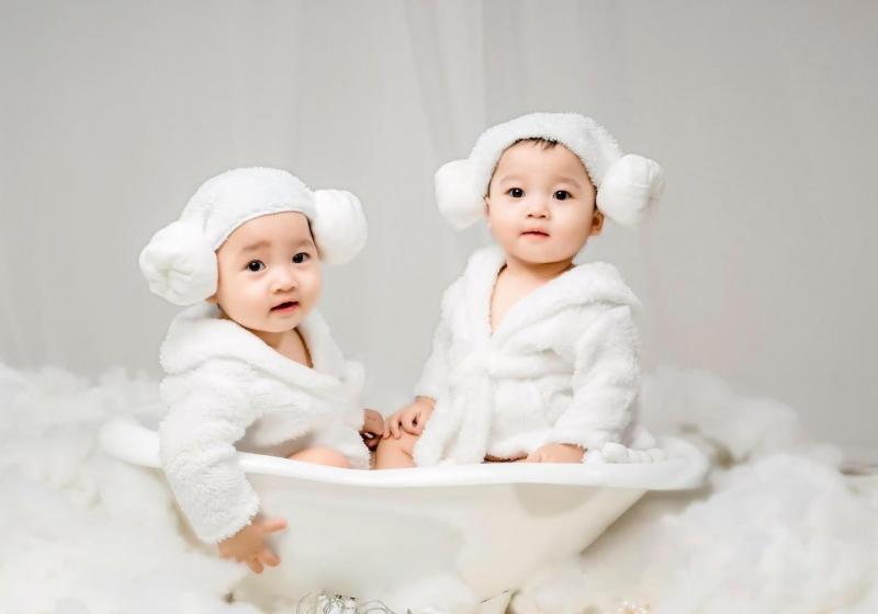 Chuột Baby Studio