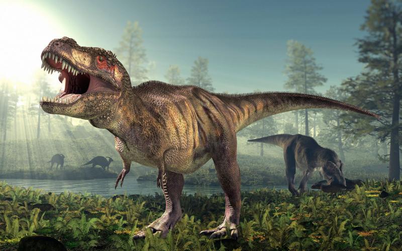 Tại sao bây giờ không có khủng long nữa?