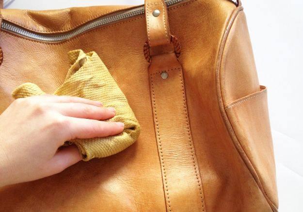 Túi xách của bạn là là món đồ nội thất trong nhà cho vi trùng kí sinh