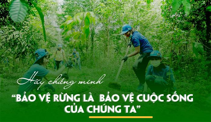 Bài văn chứng minh rằng bảo vệ rừng là bảo vệ cuộc sống của chúng ta số 4