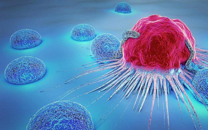 Biện pháp ngăn ngừa ung thư tuyến tụy
