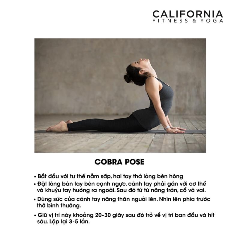 California Fitness & Yoga Quận Tân Bình