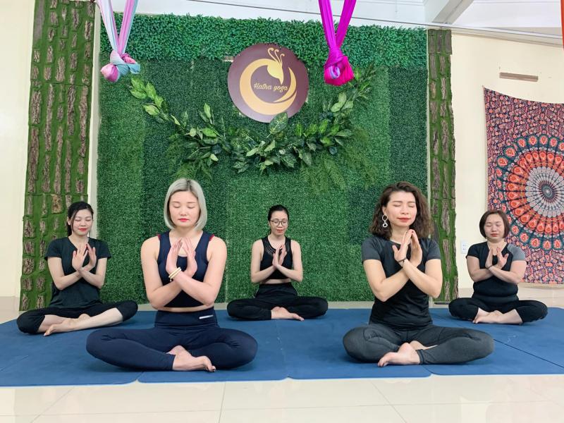 Hatha Yoga Việt Nam