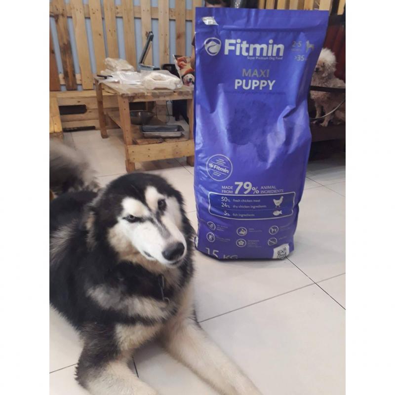 Thức ăn cho chó Fitmin