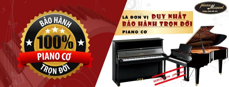 Công ty TNHH XNK Nhạc cụ Piano Mozart