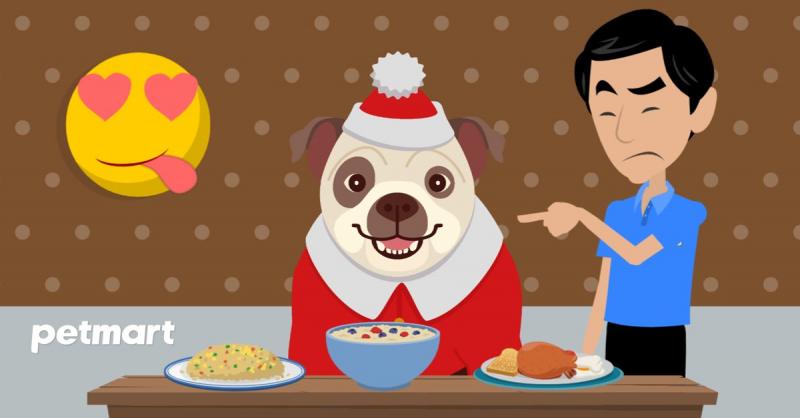 Thú cưng đột ngột trở nên ăn quá nhiều so với bình thường