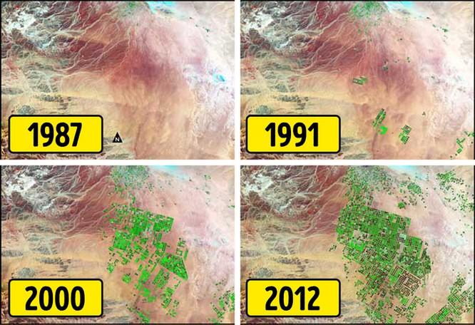 Biến sa mạc thành đất nông nghiệp