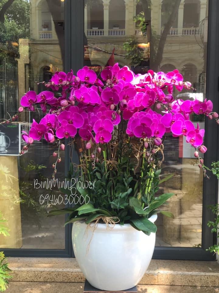 Bình Minh Flowers Shop