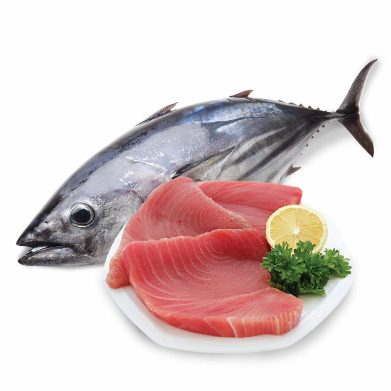 Cá ngừ có thể ảnh hưởng đến khả năng vận động của bạn