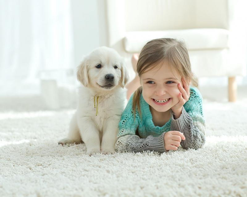 Cho phép trẻ nhỏ nuôi thú cưng trong nhà